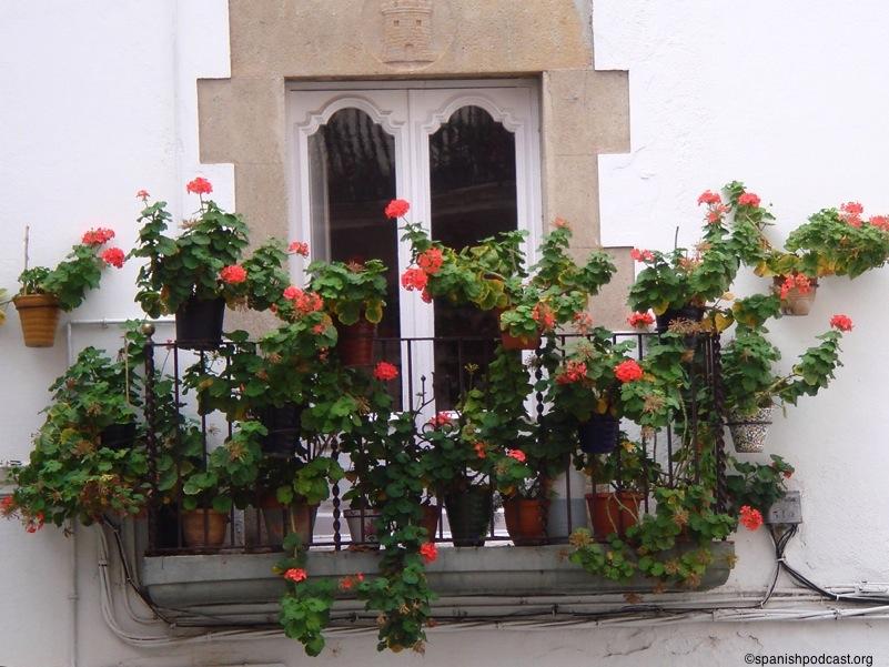 Balc n con geranios for Tipos de toldos para balcones
