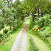 Camino en Costa Rica